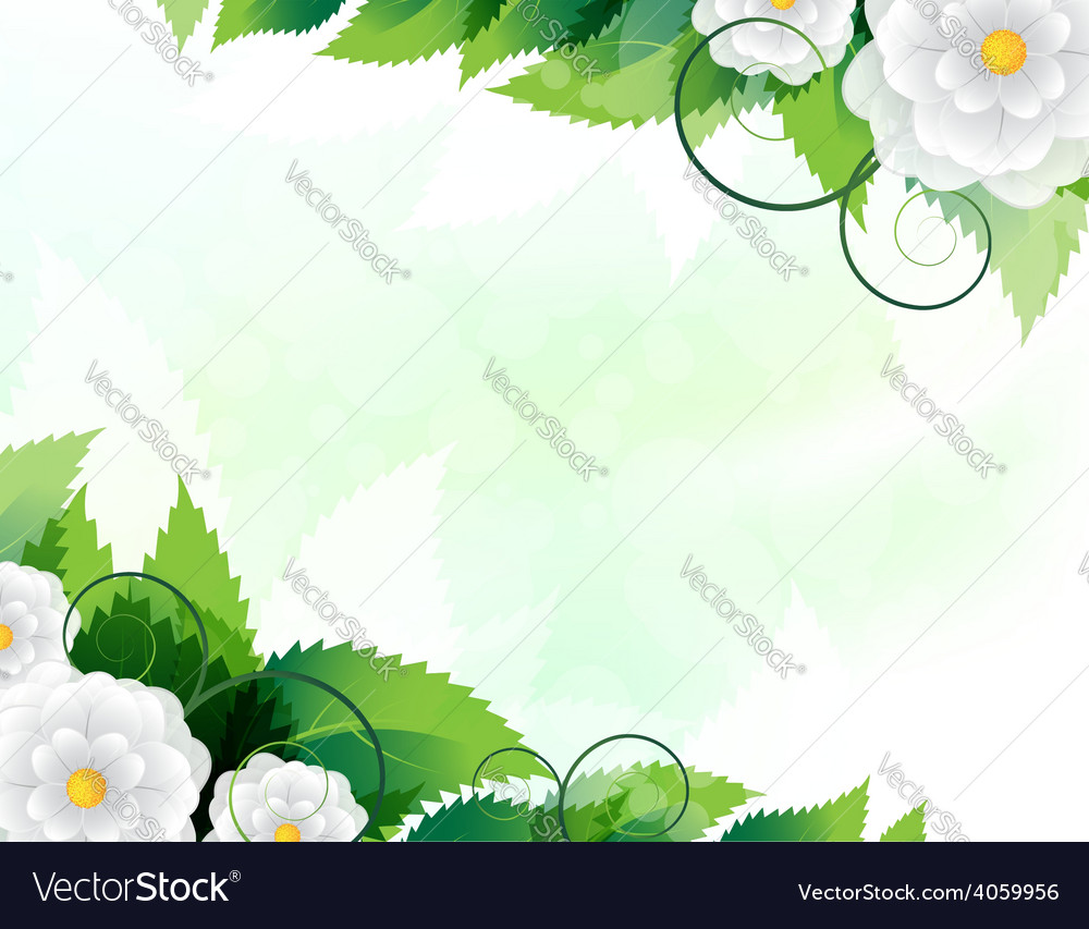 Green leaves and white flowers vector | Price: 1 Credit (USD $1)
