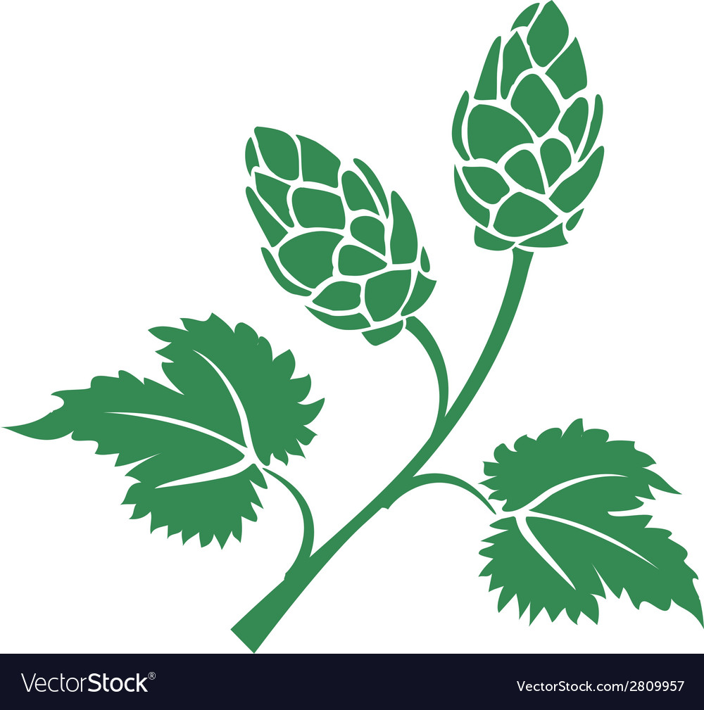 Green hops icon vector   Price: 1 Credit (USD $1)
