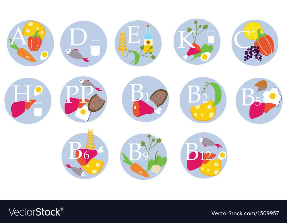 Vitamins table vector | Price: 1 Credit (USD $1)
