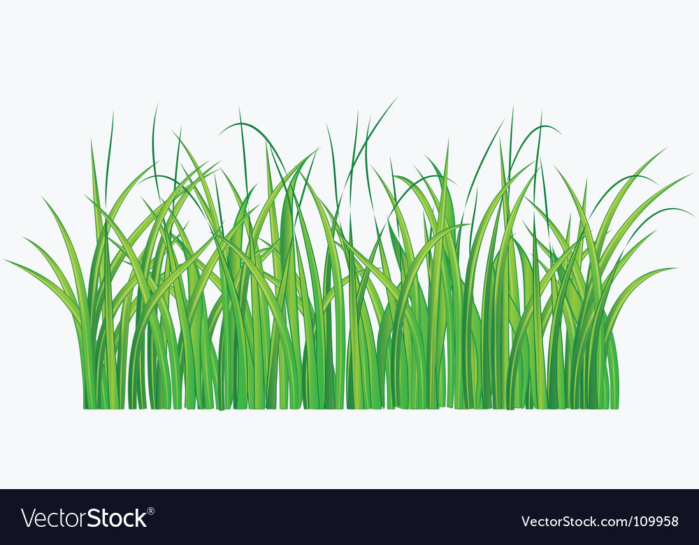 Grassy field vector | Price: 1 Credit (USD $1)