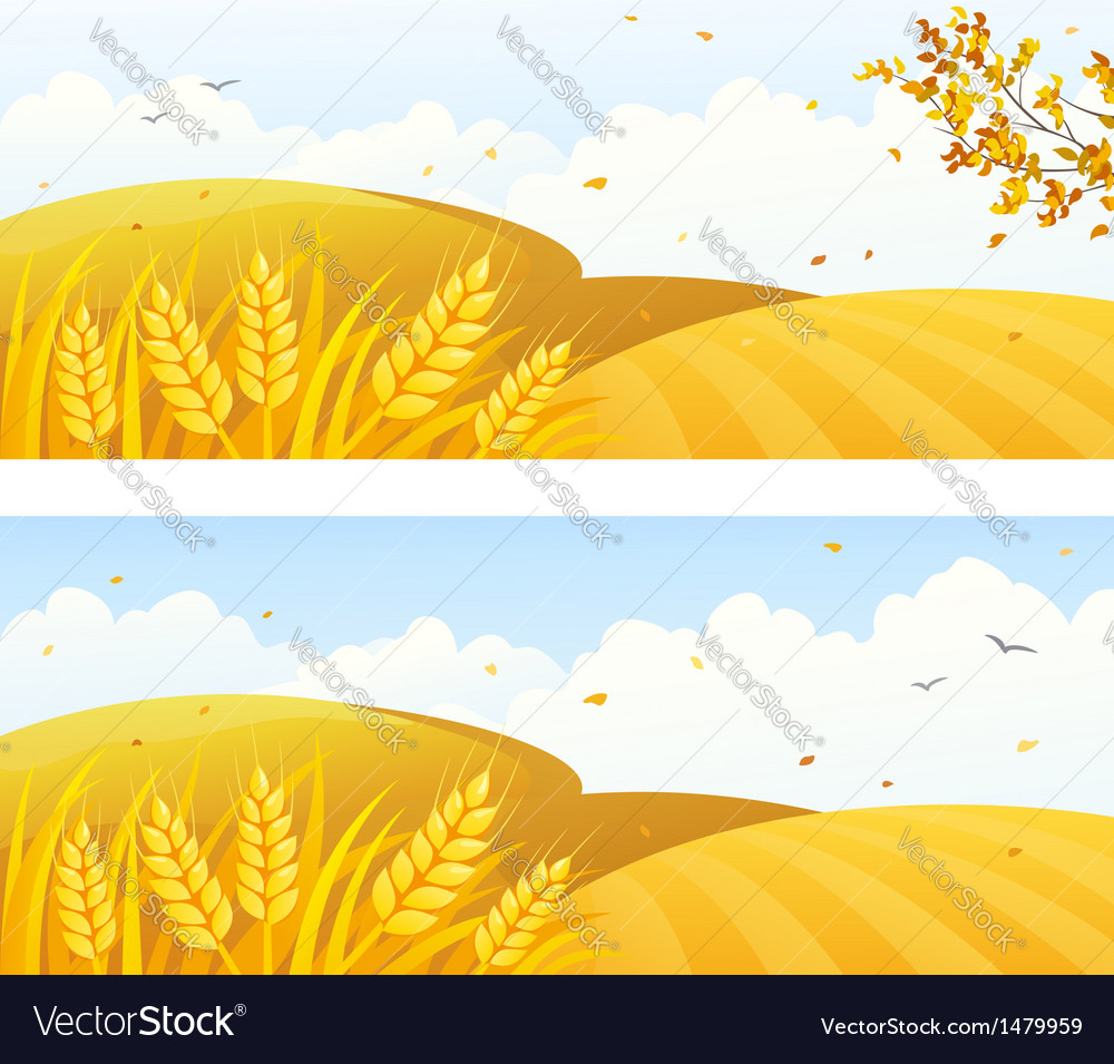 Autumn crop banners vector | Price: 1 Credit (USD $1)