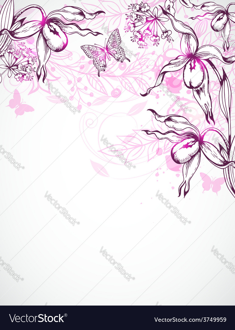 Floral background with orchids vector | Price: 1 Credit (USD $1)