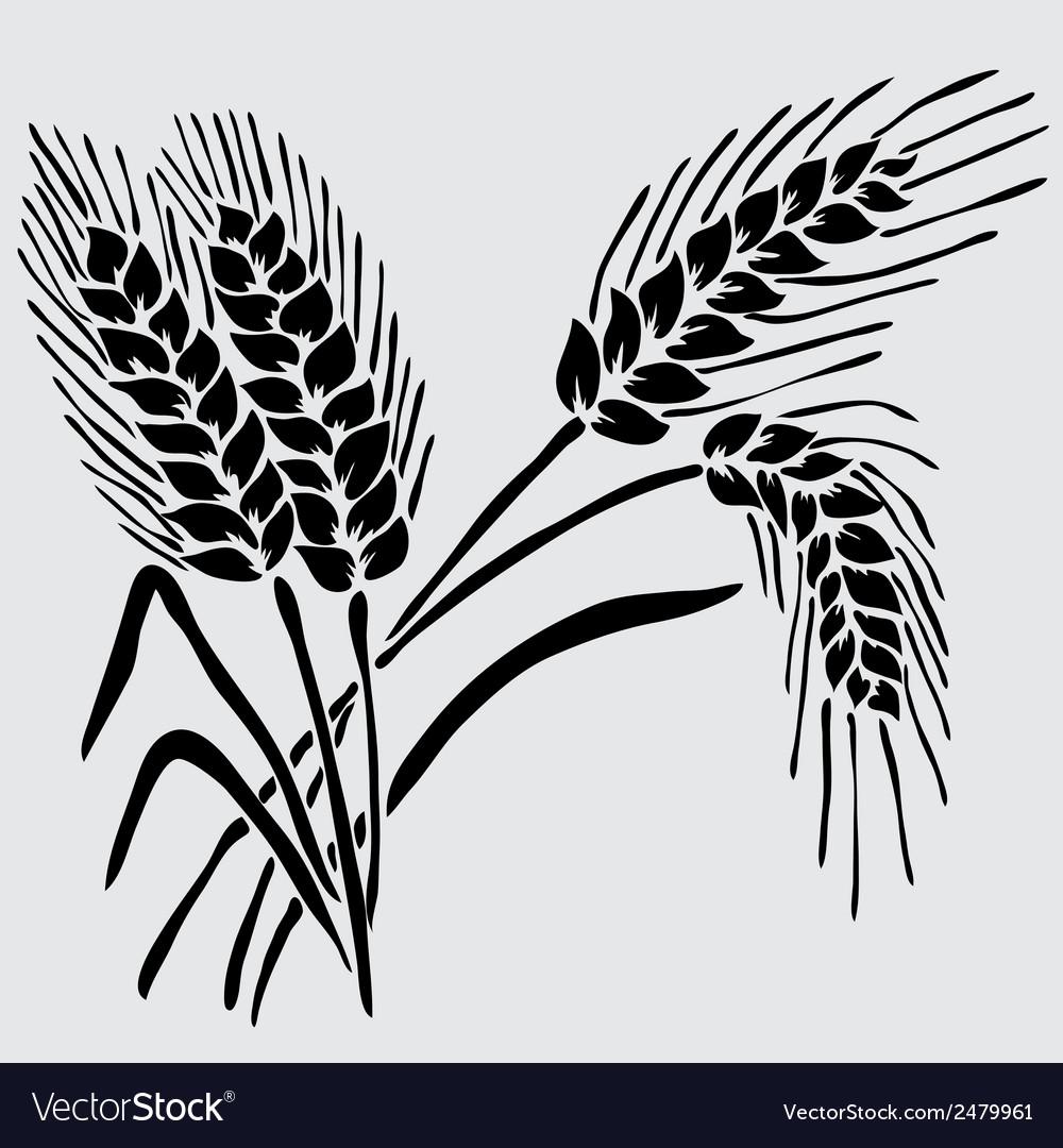 Decorative wheat vector | Price: 1 Credit (USD $1)