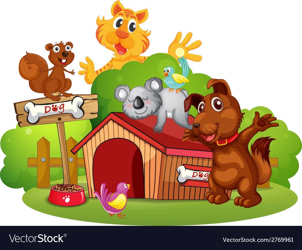 Pets vector | Price: 1 Credit (USD $1)