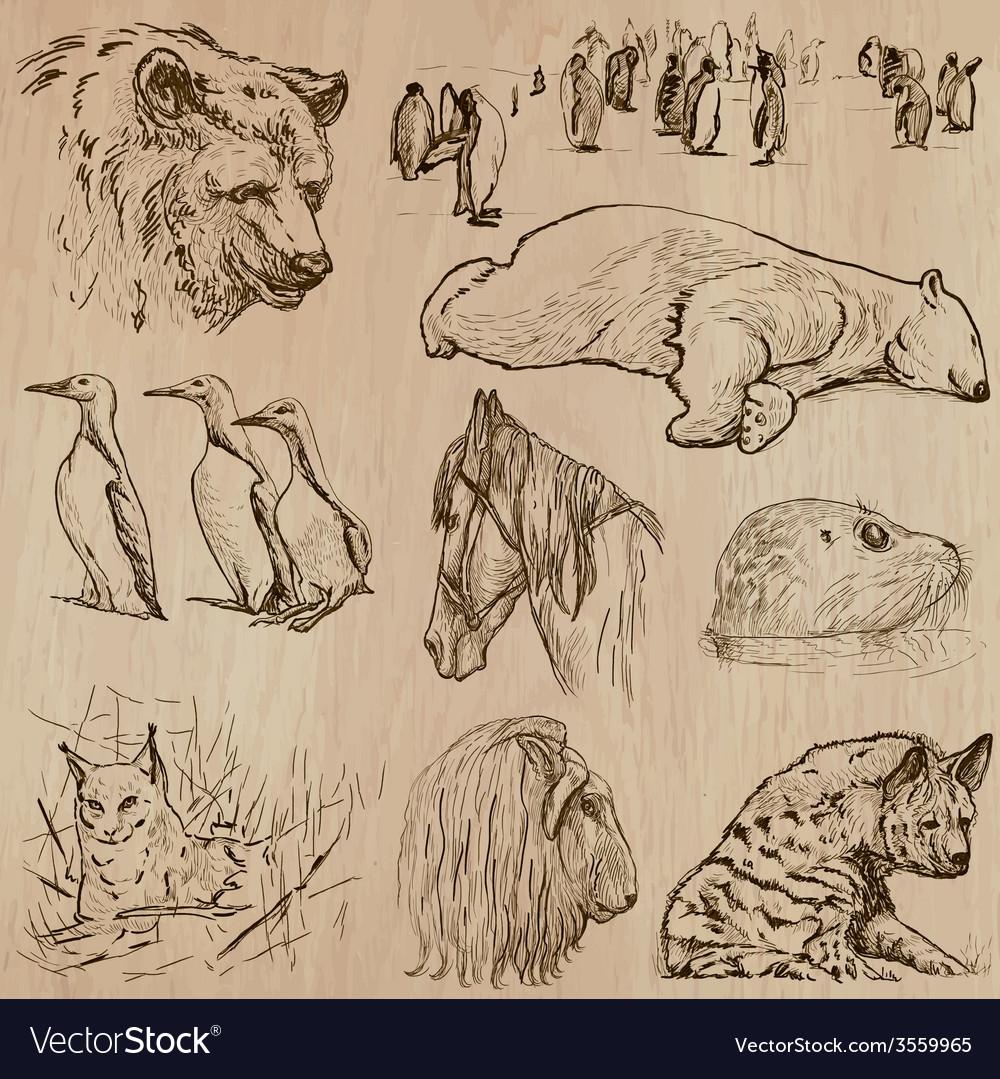 Animals around the world part 21 hand drawn pack vector | Price: 3 Credit (USD $3)