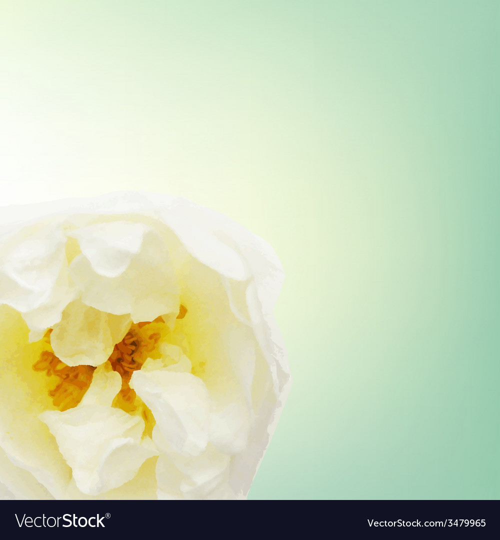 Pastel rose card vector   Price: 1 Credit (USD $1)