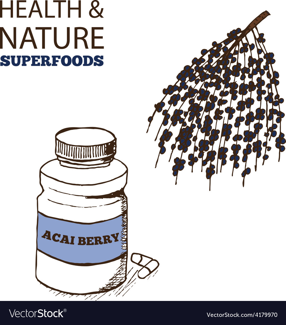 Health and nature superfoods collection vector | Price: 1 Credit (USD $1)