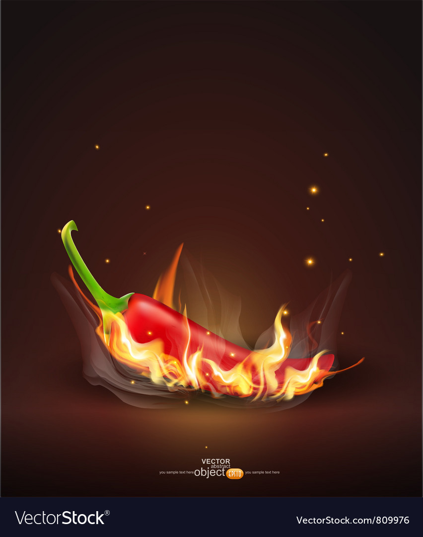 Flaming red chili vector | Price: 3 Credit (USD $3)