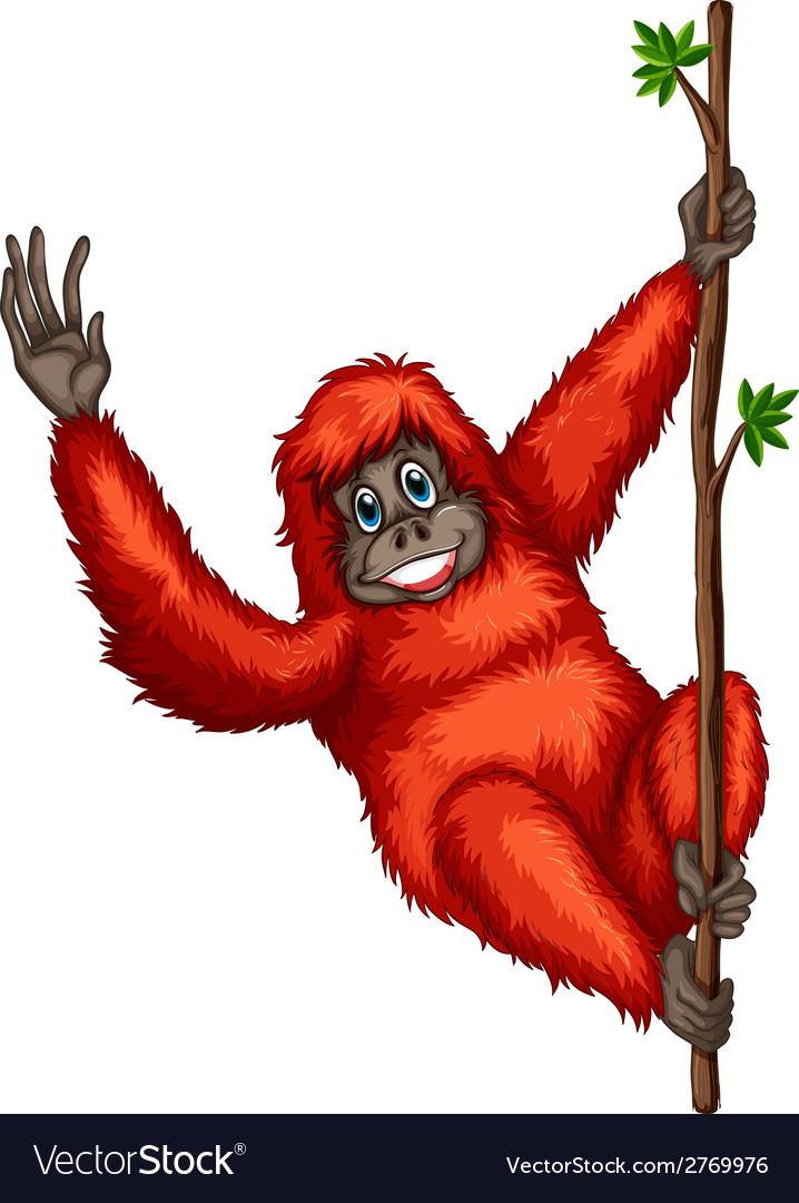 Orangutan vector | Price: 1 Credit (USD $1)
