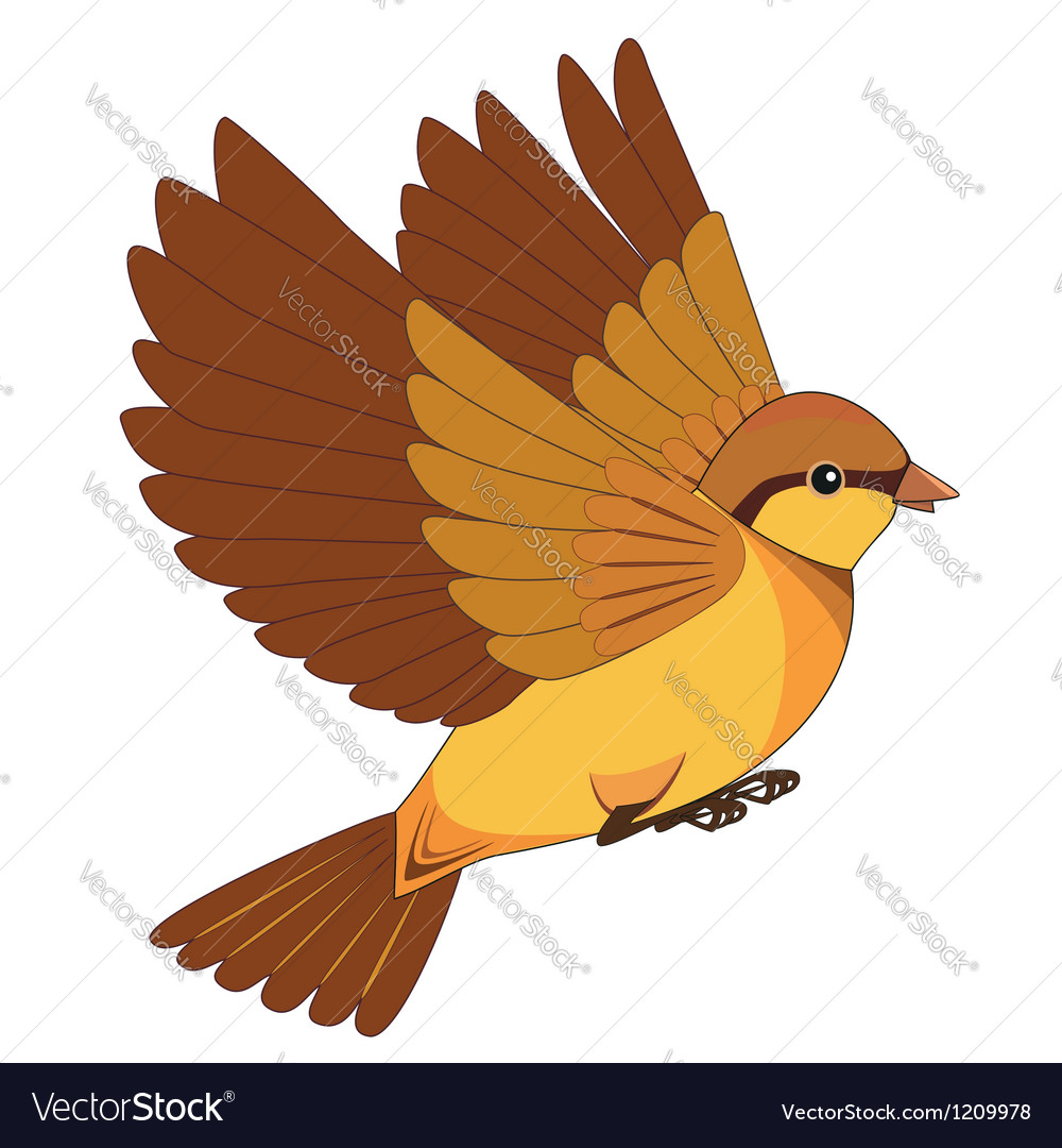 Flying bird cartoon isolated on a white background vector | Price: 1 Credit (USD $1)