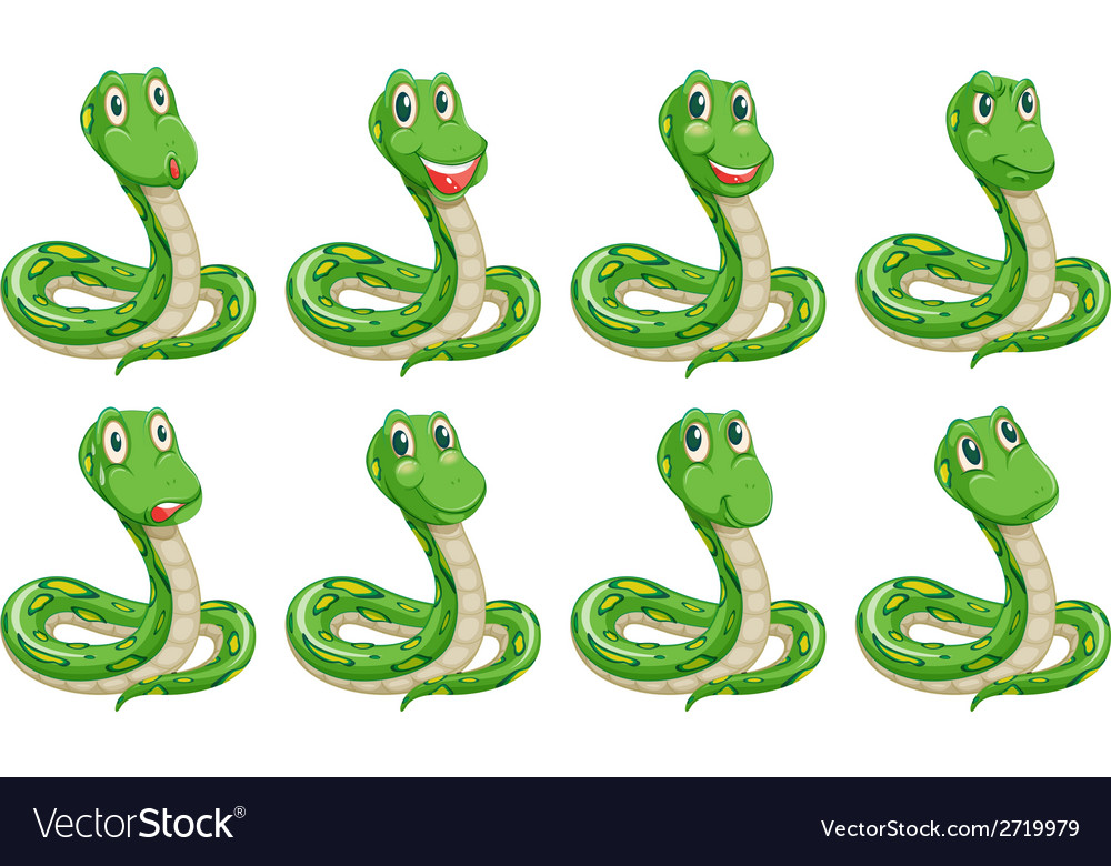 Different snake expressions vector | Price: 1 Credit (USD $1)