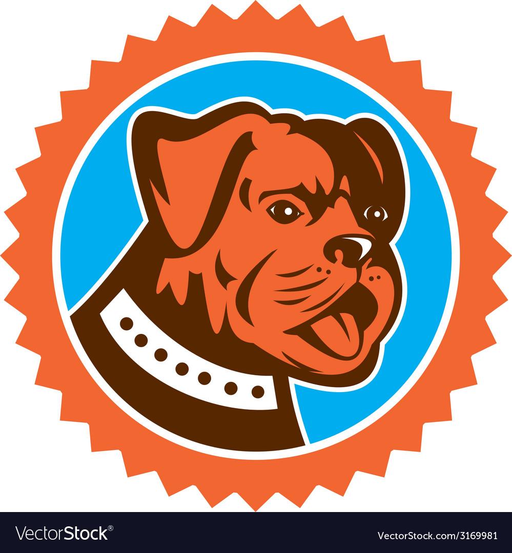 Bulldog dog mongrel head mascot rosette vector | Price: 1 Credit (USD $1)