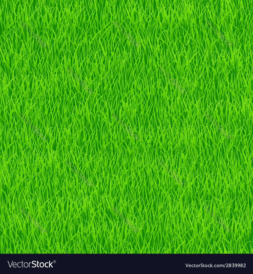Grass pattern vector | Price: 1 Credit (USD $1)