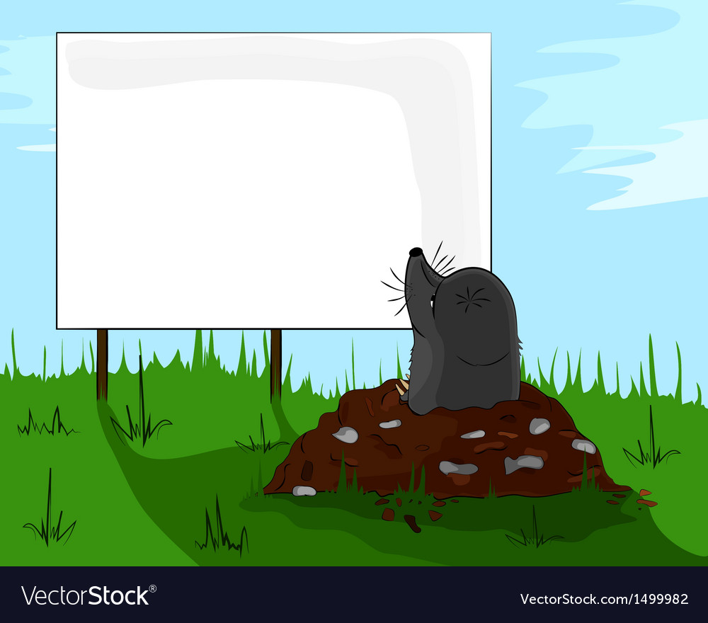 Mole on molehill looking at a billboard vector | Price: 1 Credit (USD $1)