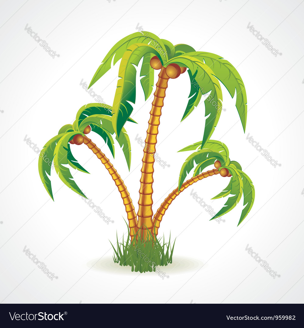 The palm trees vector | Price: 3 Credit (USD $3)