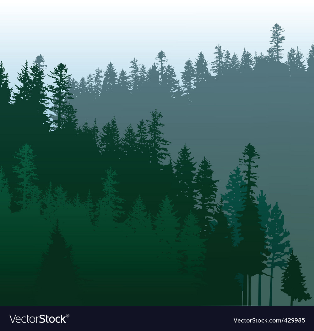 Coniferous forest vector | Price: 1 Credit (USD $1)