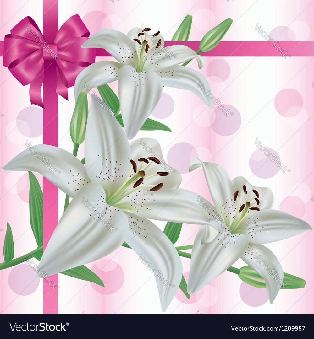 Greeting or invitation card with flower lily vector | Price: 1 Credit (USD $1)