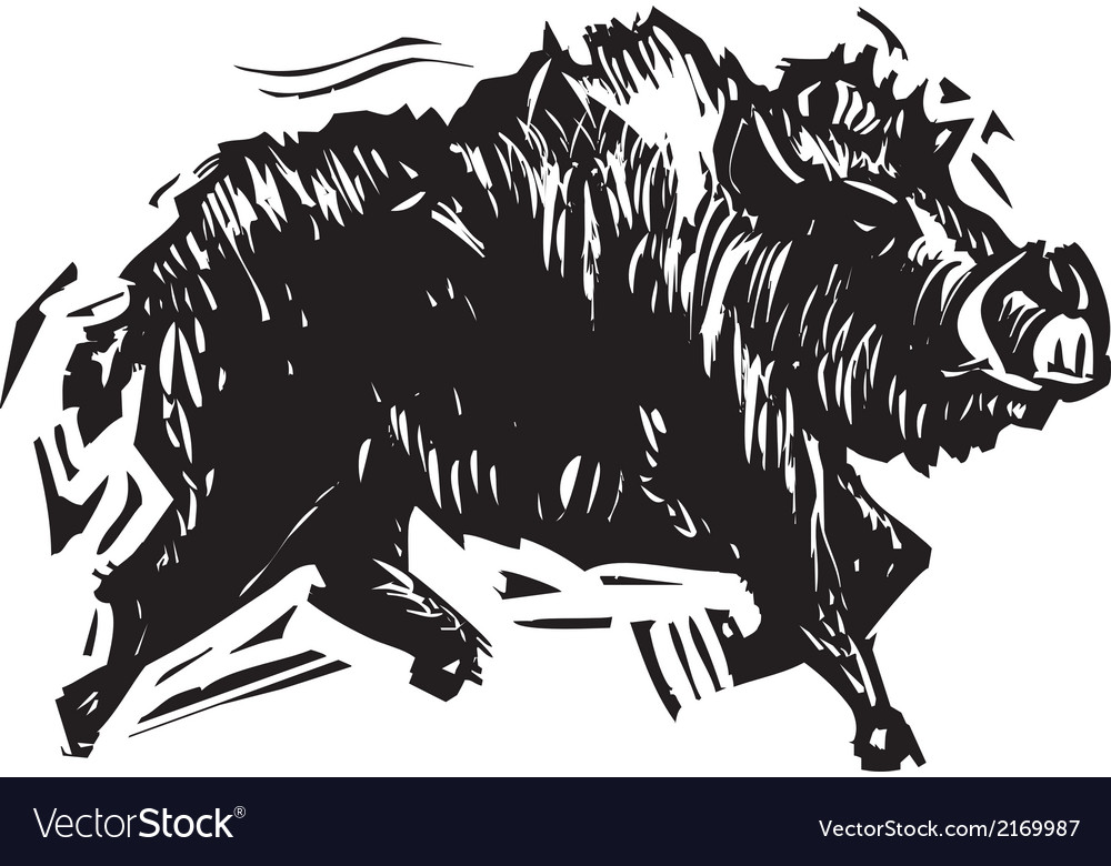 Wild boar vector | Price: 1 Credit (USD $1)