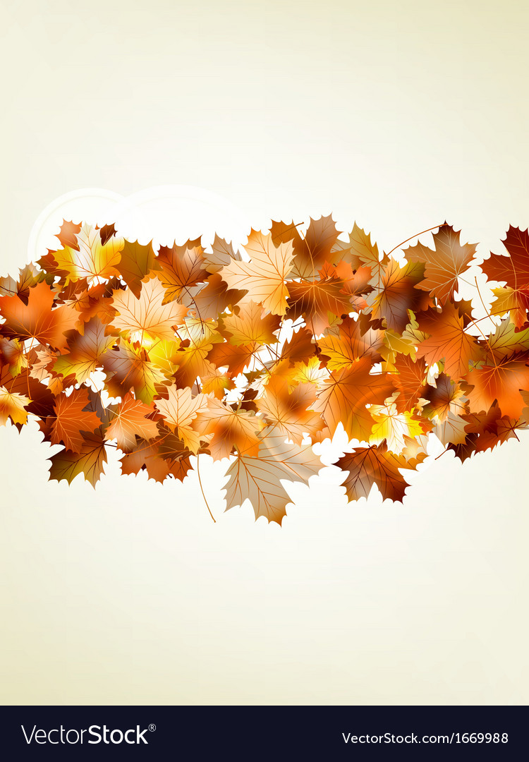 Autumnal leaf of maple and sunlight eps 10 vector | Price: 1 Credit (USD $1)