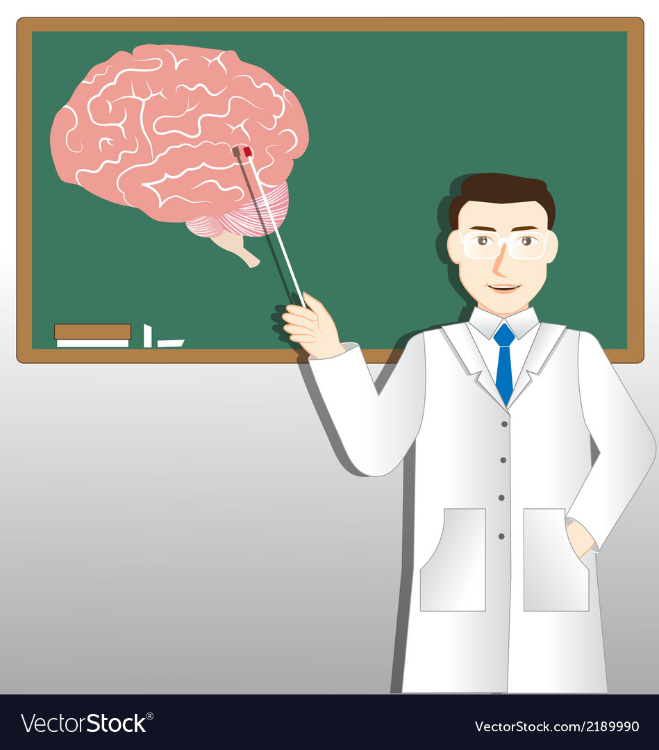 Neurology doctor and green board vector | Price: 1 Credit (USD $1)