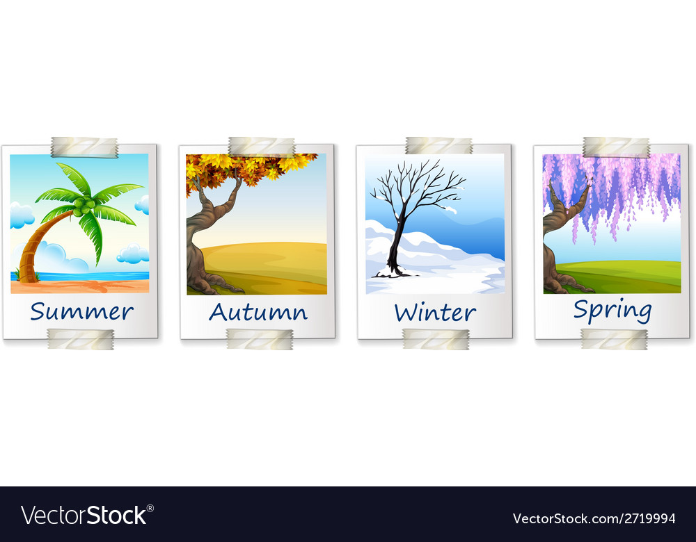 Seasons artwork vector | Price: 1 Credit (USD $1)