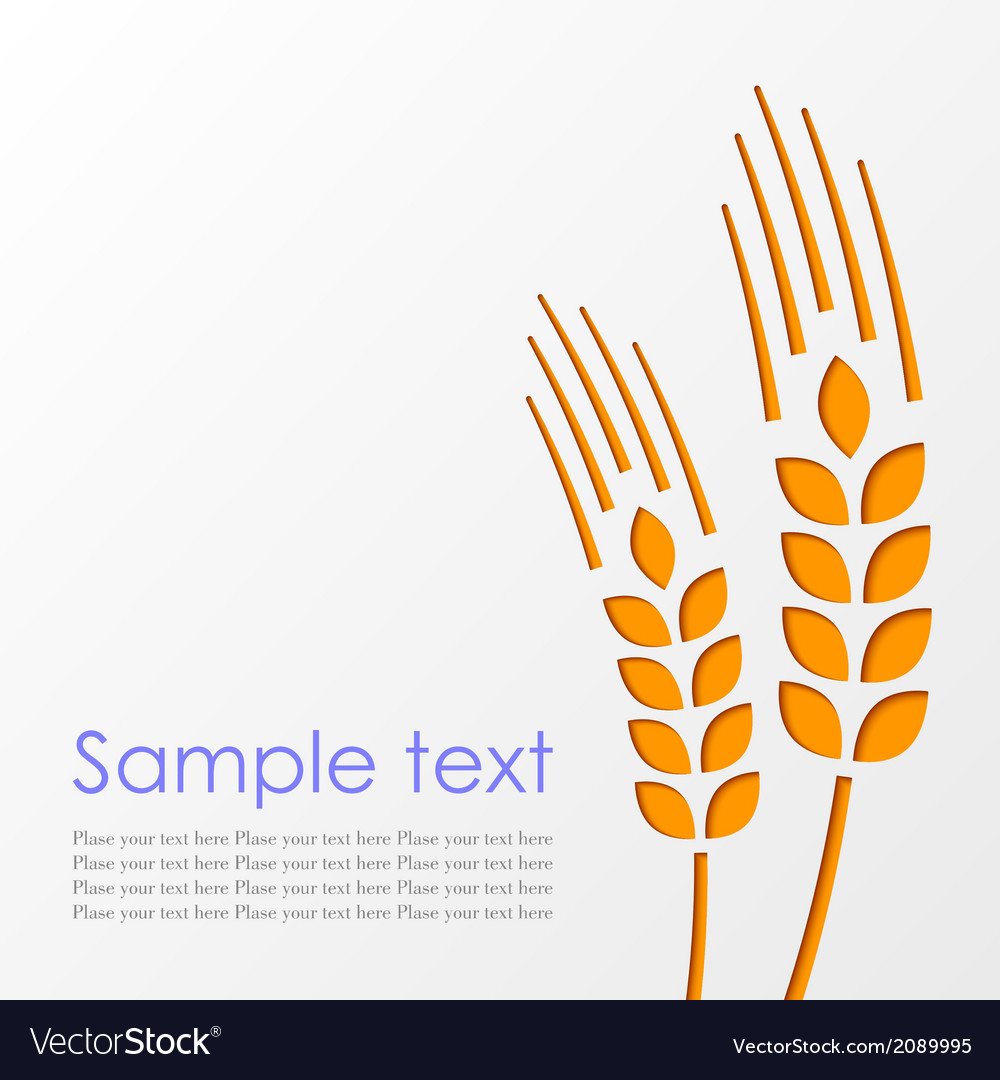 Wheat background eps10 vector | Price: 1 Credit (USD $1)