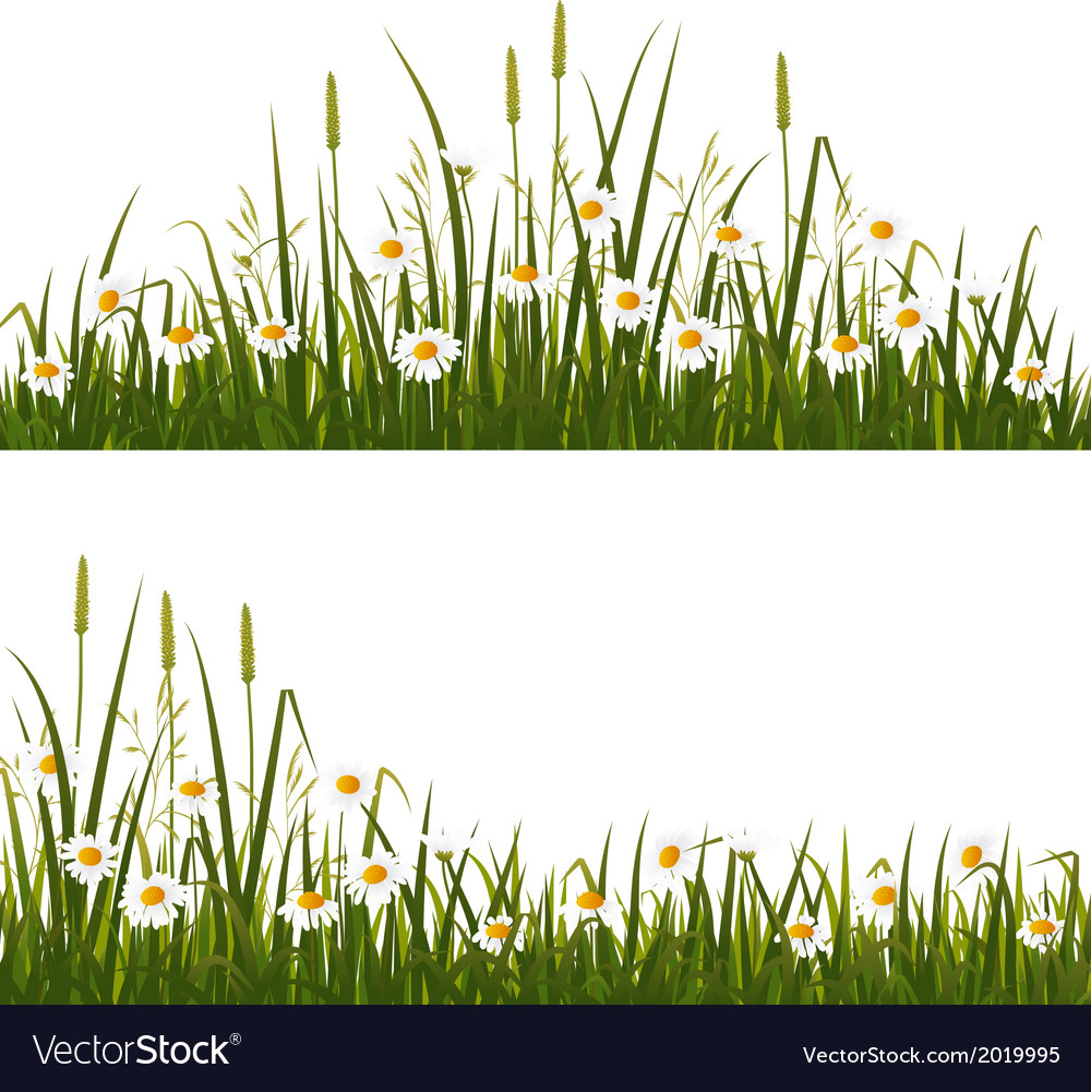 Wild flower meadow vector   Price: 1 Credit (USD $1)