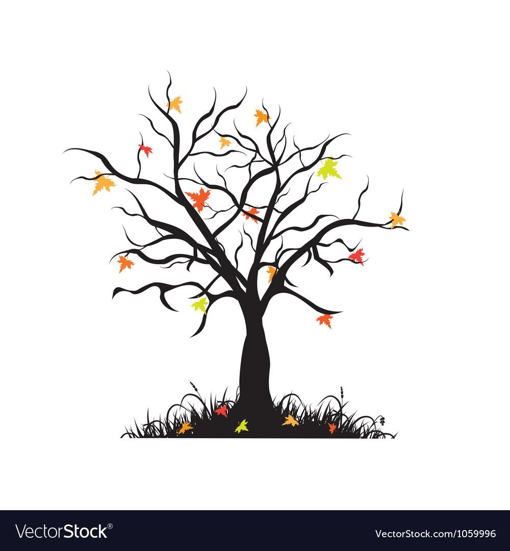 Autumn maple tree vector   Price: 1 Credit (USD $1)