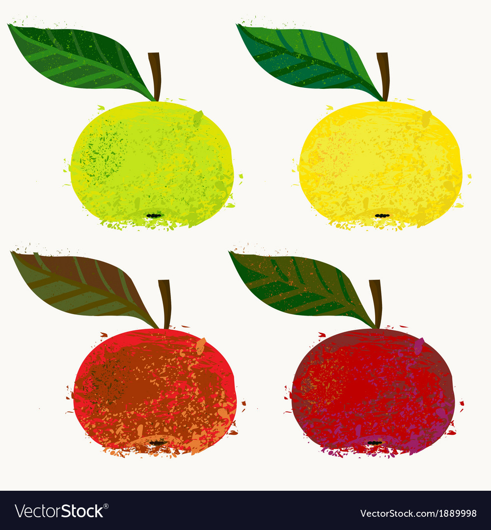Apple fruits vector | Price: 1 Credit (USD $1)