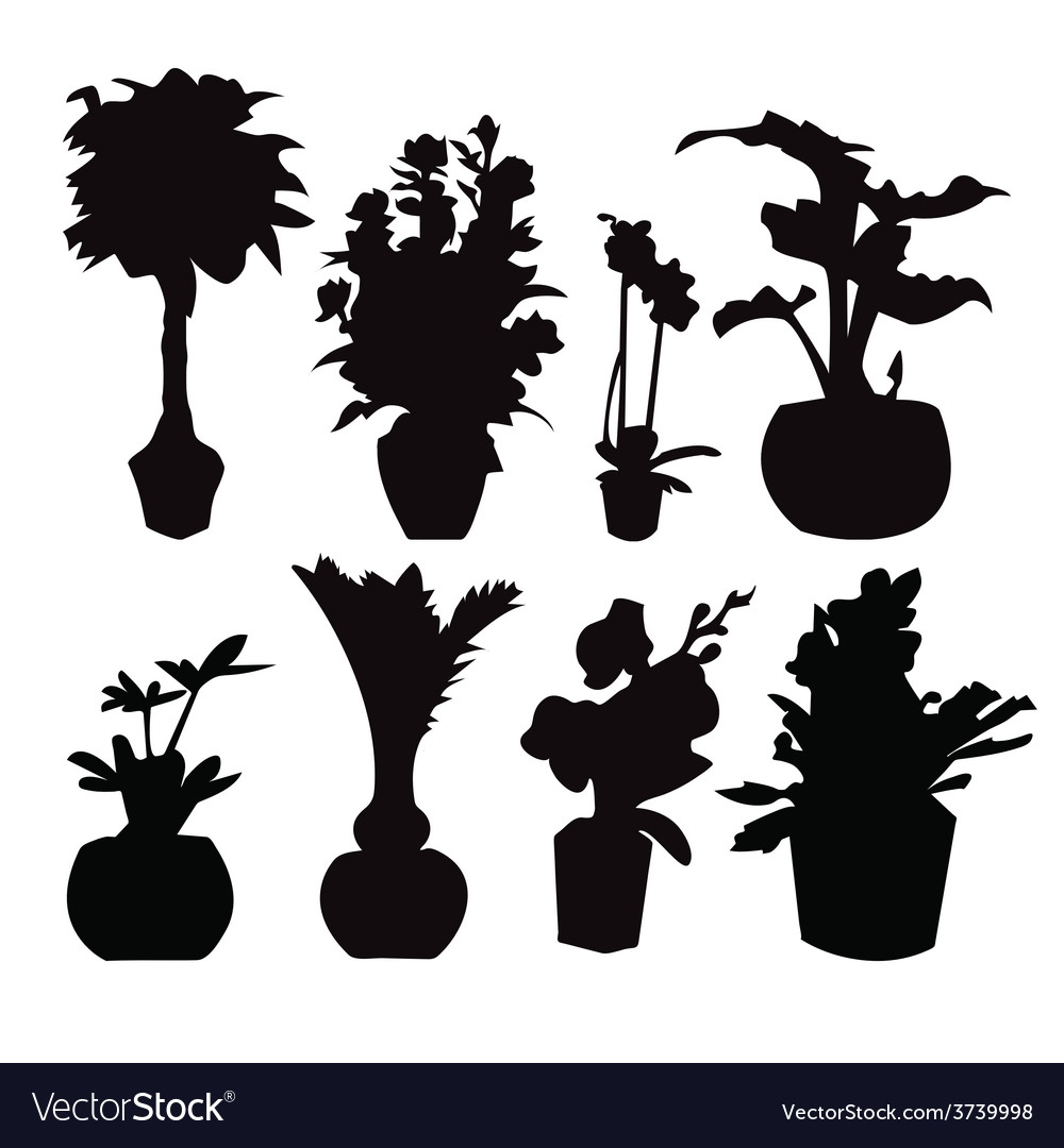 Pot plant 38 vector | Price: 1 Credit (USD $1)