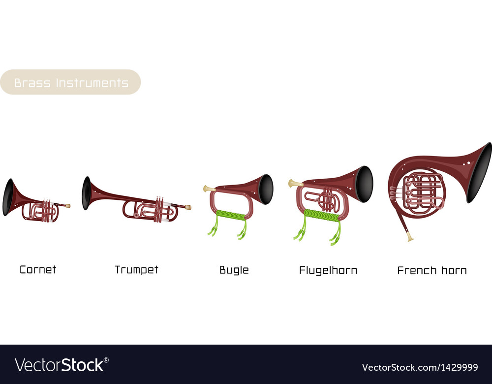 Five brass instrument isolated on white background vector | Price: 1 Credit (USD $1)