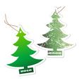 Aromatic christmas vector