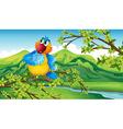 A parrot near the riverbank vector