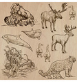 Animals around the world part 5 hand drawn pack vector