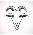 Goat face vector