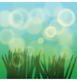Sun rays and fresh green grass vector