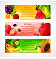 Fruits banners horizontal vector