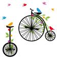 Retro bicycles with birds vector