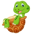 Cute tortoise cartoon vector