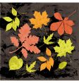 Silhouettes of autumn leaves vector