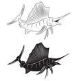 Fish marlin vector