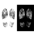 Foot prints vector