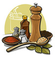 Spices vector