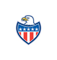 American bald eagle flag shield retro vector