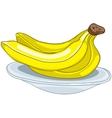 Cartoon food fruit banana vector