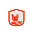 Hen chicken nest egg shield retro vector
