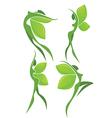Eco beauty vector