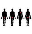 Anatomy of love vector