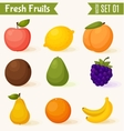Fruits icon set colorful template for cooking vector