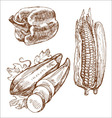 Kitchen cucurbita corn bell paper brown food vector